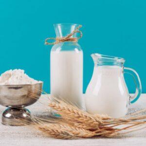 sữa dinh dưỡng